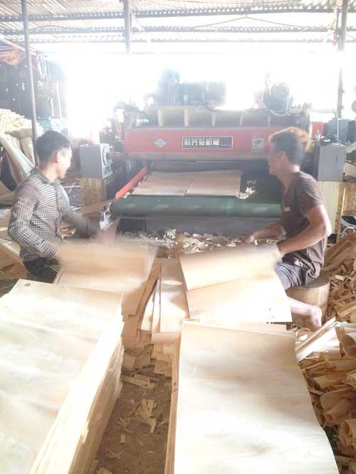 Sản xuất ván lạng